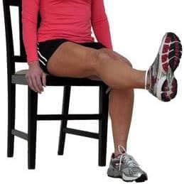 seated leg raise exercise